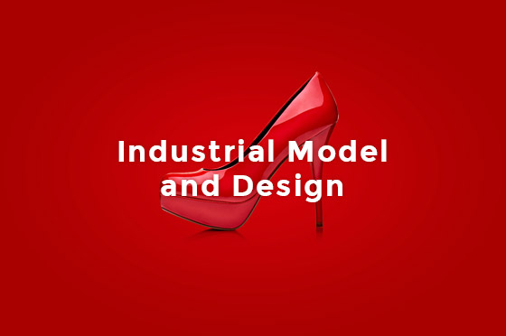 industrial model design